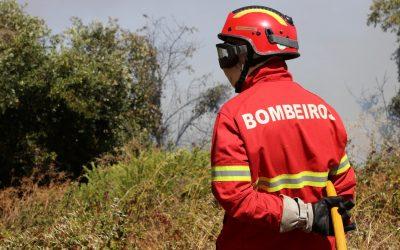 Fogo em Abrantes foi combatido por 180 operacionais e chegou a ameaçar habitações