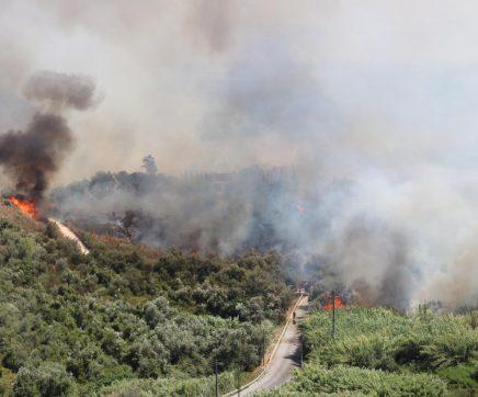 20 hectares de área ardida e um anexo atingido no incêndio em Santarém