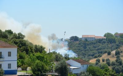 VÍDEO | Incêndio ameaça Instituto Politécnico de Santarém e mobiliza dezenas de bombeiros