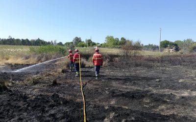 Incêndio que mobilizou mais de uma centena de operacionais em Benavente em fase de rescaldo