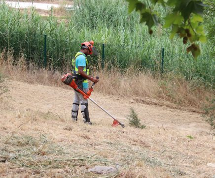 Município de Santarém limpa terrenos no concelho