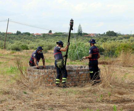 Buscas por idosa desaparecida no Cartaxo continuam
