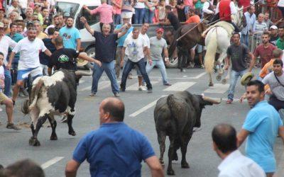 Festas de Samora Correia esperam milhares de visitantes de 15 a 19 de Agosto