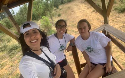 Jovens portugueses e estrangeiros vigiam a floresta em Arrouquelas