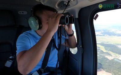 VÍDEO | GNR detecta actividade ilegal na floresta em Rio Maior com recurso a helicóptero