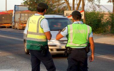 GNR detecta infracções no transporte de produtos agrícolas na região de Santarém