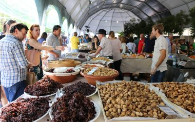 34.ª Feira Nacional dos Frutos Secos de 3 a 6 de Outubro em Torres Novas