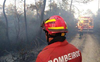Número de incêndios dobrou e área ardida quadruplicou em 2019