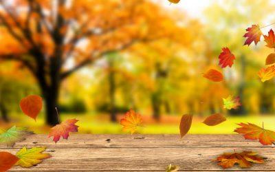 Outono começa hoje com 27 graus de temperatura máxima em Santarém
