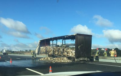 Camião de transporte de vinho arde na A1