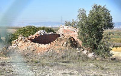Câmara de Benavente nega origem romana de forno destruído no Telhal