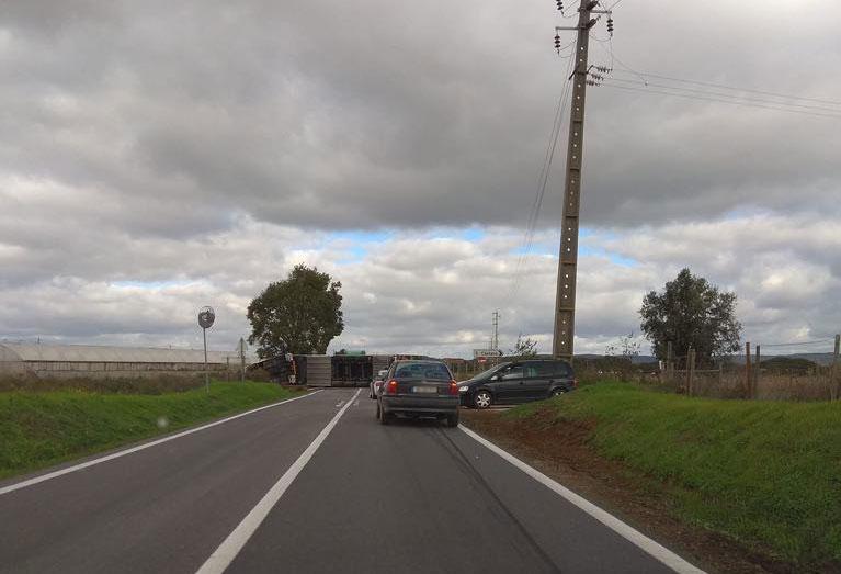 Camião tombado interrompe circulação na EN 365 e provoca um ferido