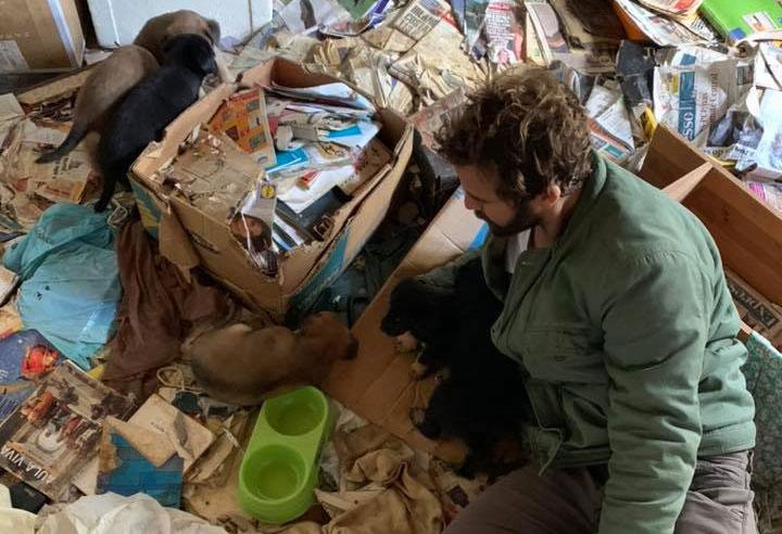 João Manzarra apela à adopção de cães abandonados em Santarém