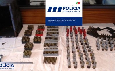 PSP apreende centenas de munições durante desmatamento de terreno