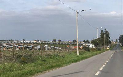 Salvaterra de Magos vai exportar energia com instalação de nova central fotovoltaica
