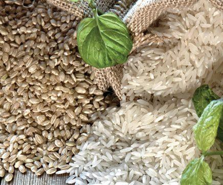 Nova rotulagem do arroz defende agricultores, industriais e consumidores