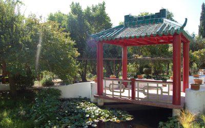 Jardim-Horto de Camões reabre com limitações