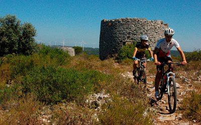 Obras de 76 percursos cicláveis no Alentejo e Ribatejo arrancaram esta semana