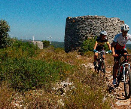 Três mil quilómetros de percursos cicláveis no Alentejo e Ribatejo