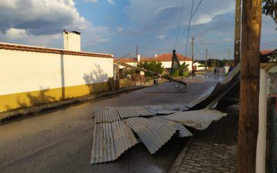Fenómeno extremo de vento arranca árvores e provoca danos em habitações em Fazendas de Almeirim