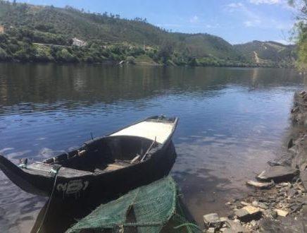 Movimento proTEJO e BE denunciam nova vaga de poluição no rio