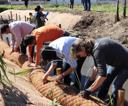Projecto ambiental já permitiu reabilitar 3,5 km de rio em Santarém