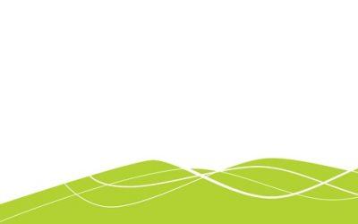 2020 – Ano Internacional da Fitossanidade: o ano para comemorar as plantas
