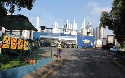 IAPMEI recorre à GNR para encerramento da Fabrióleo em Torres Novas após decisão judicial