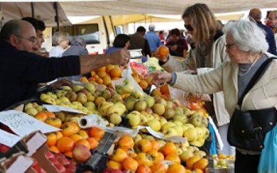 Câmara de Santarém limita lotação do mercado bimensal a 250 pessoas