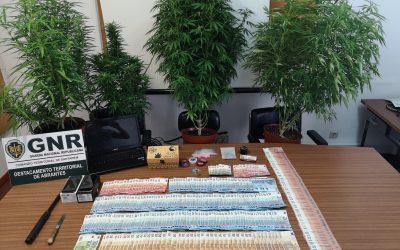 Homem detido por tráfico de droga e posse de notas falsas