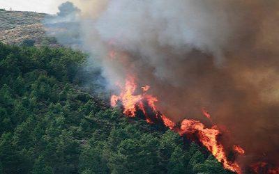 Situação de alerta devido ao risco de incêndios prolongada até domingo