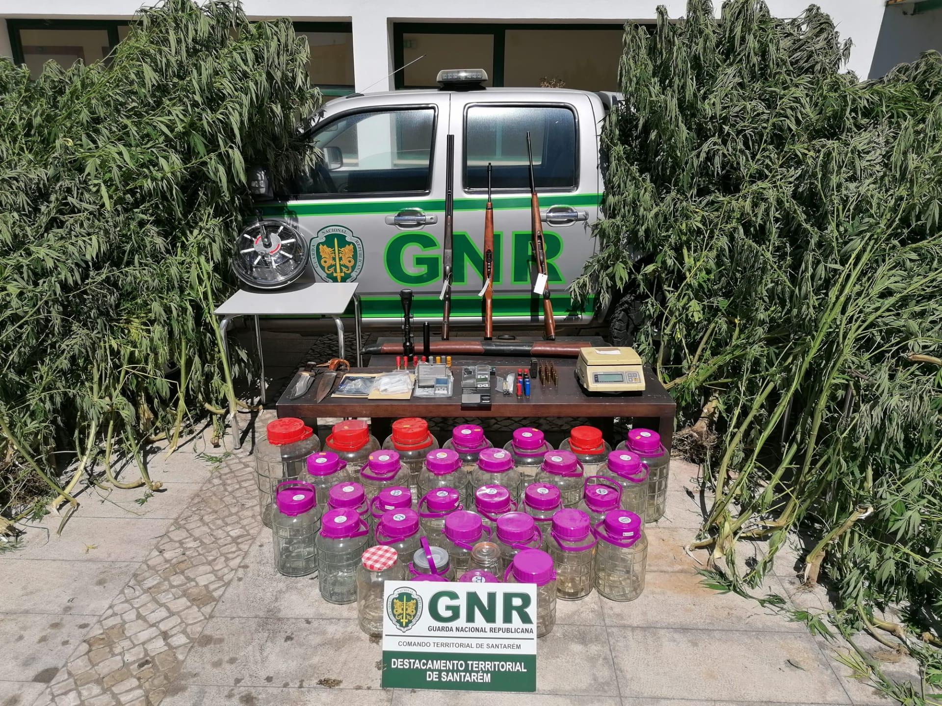Três homens detidos por tráfico de droga em Almeirim