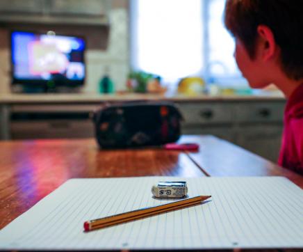 Estudo da Deco revela famílias pouco satisfeitas com ensino a distância no 1.º ciclo