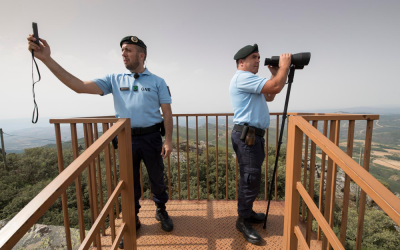 Mais de 3 mil contra-ordenações por incumprimento na limpeza da floresta