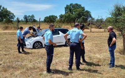 Foragido da cadeia detido após perseguição policial em Glória do Ribatejo
