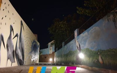 PIN'ARTE dá vida e cor à freguesia de Ulme