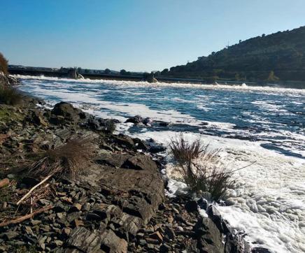 Movimento ambientalista pede medidas urgentes para combater poluição no Tejo